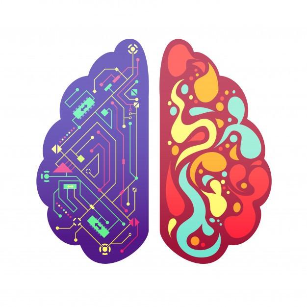 تاثیر شیرینی جات بر فعالیت مغز